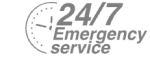 24/7 Emergency Service Pest Control in Notting Hill, W11. Call Now! 020 8166 9746